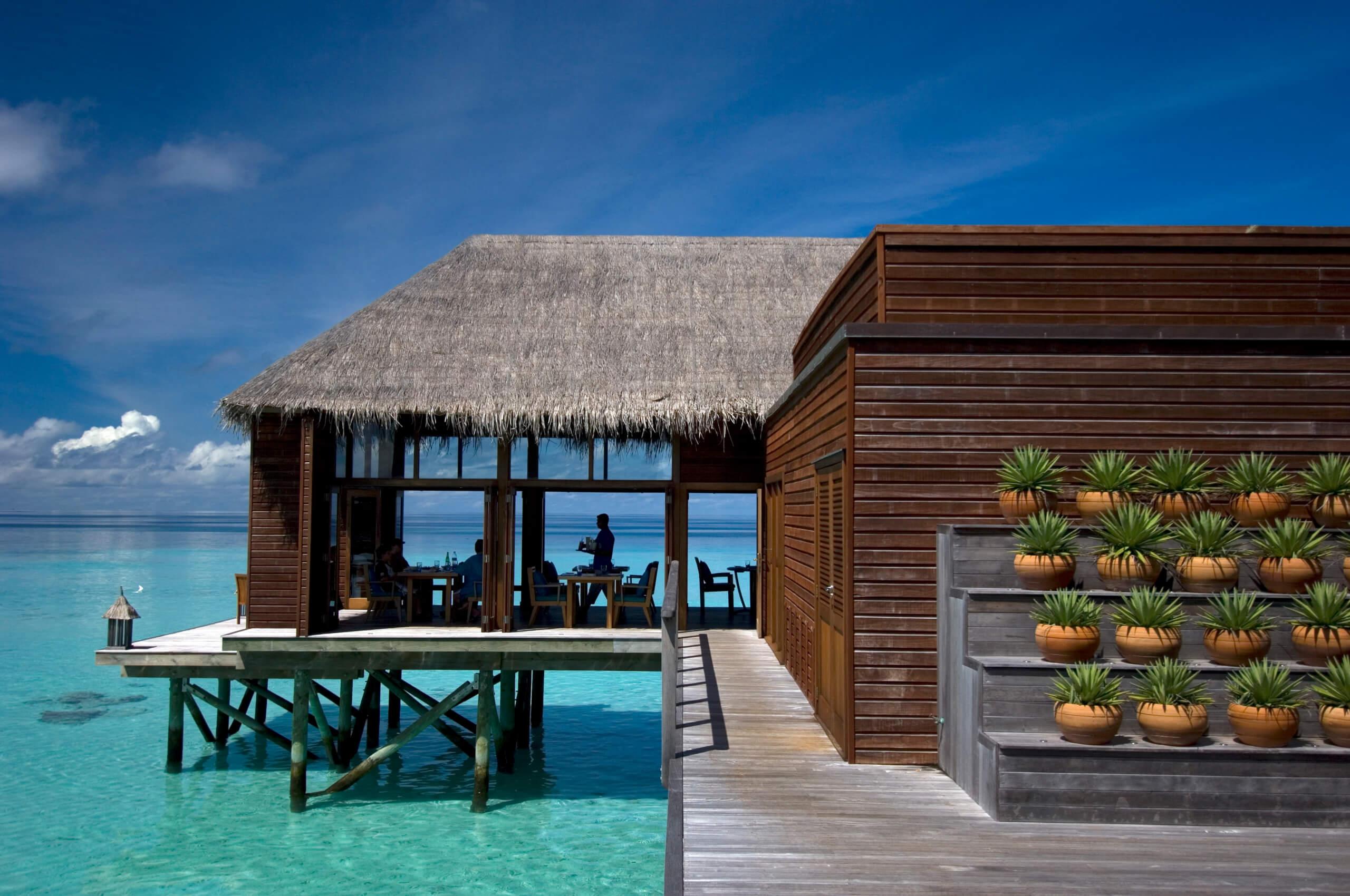 conrad rangali island, conrad maldives rangali island, conrad maldives rangali island price, 8. conrad maldives rangali island, conrad island, rangali island conrad, conrad rangali islands, conrad rangali island maldives, conrad maldives rangali island maldives, conrad island maldives, conrad maldives rangali island 5, conrad maldives rangali islands, conrad malediven rangali island, conrad maldives rangali island all inclusive, malediven conrad maldives rangali island, conrad maldives rangali island booking, the conrad maldives rangali island, maldives conrad rangali island, отель conrad maldives rangali island, conrad maldives rangali island buchen, conrad maldives rangali island holidays…