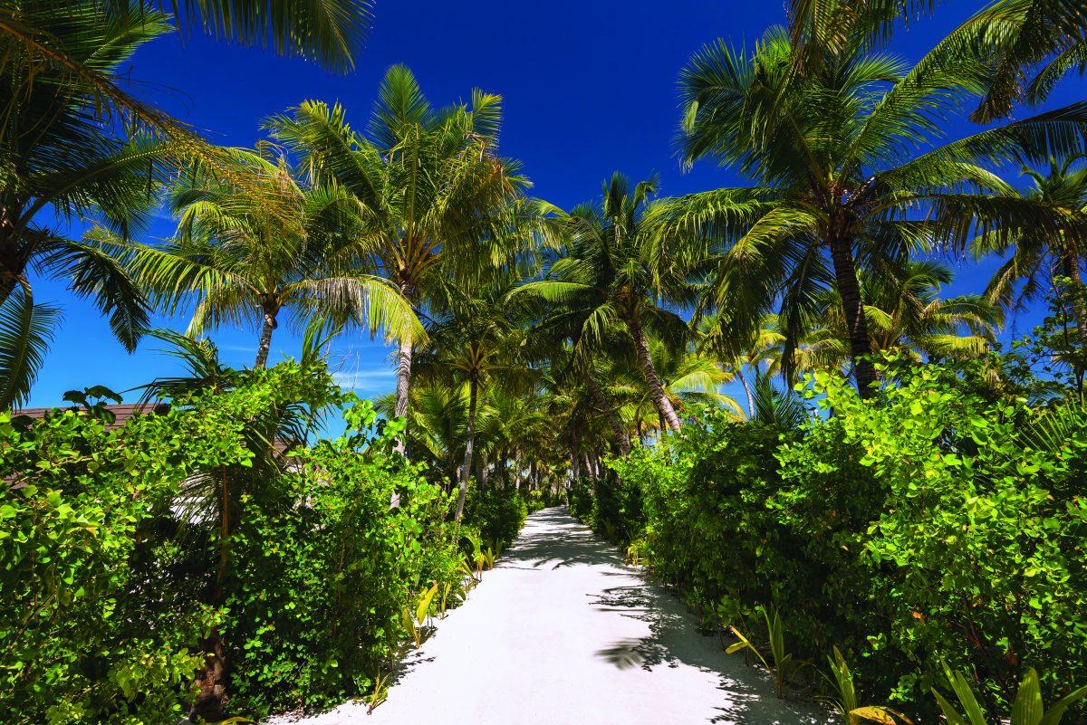 Main island pathway
