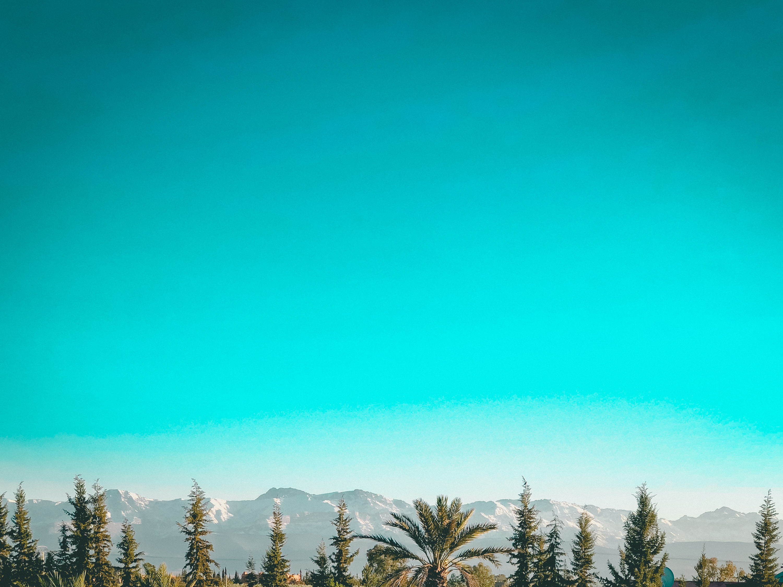 Beat Hotel Festival, Beat Hotel, Beat Hotel Marrakech, Beat Hotel Marrakech festival