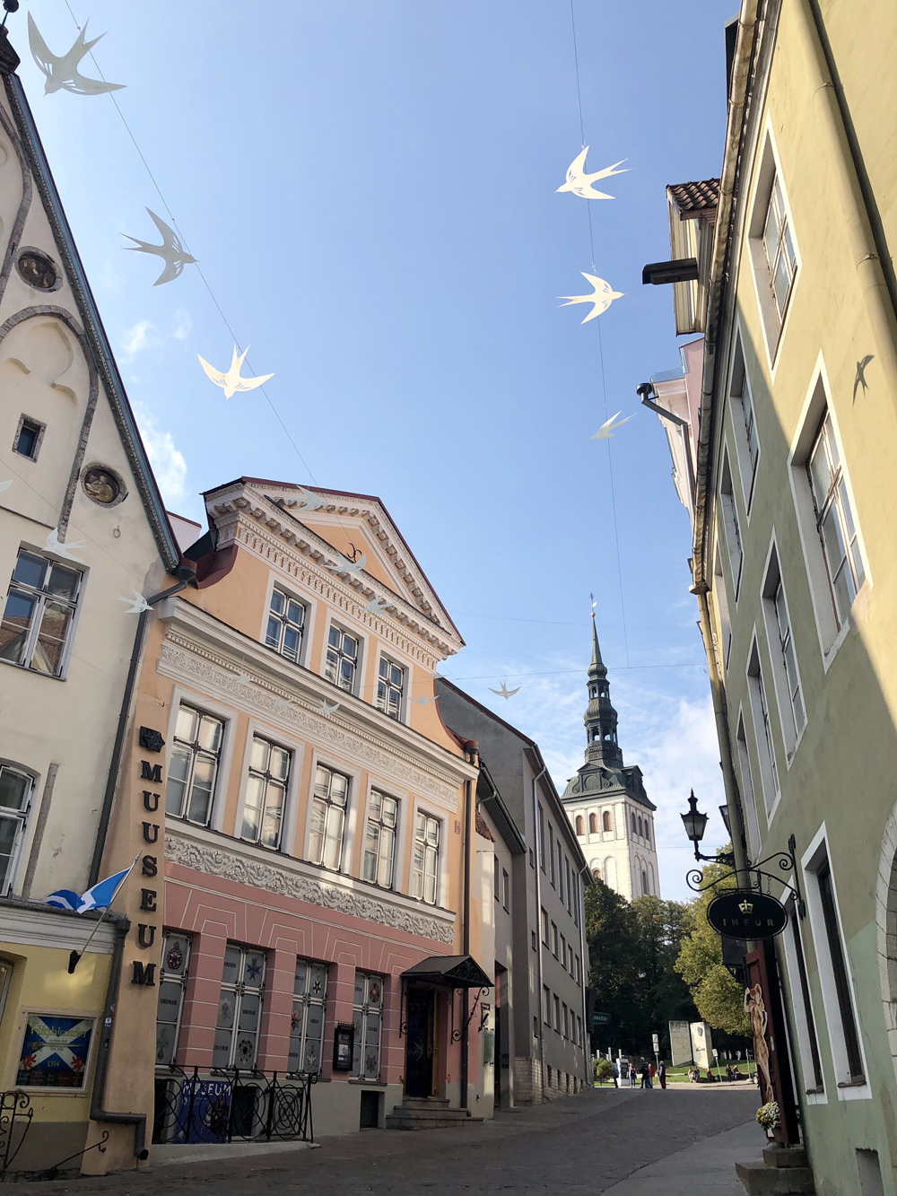 Things to Do in Tallin, Things to Do Tallin Estonia, what to do in Tallin, top things to do in Tallin