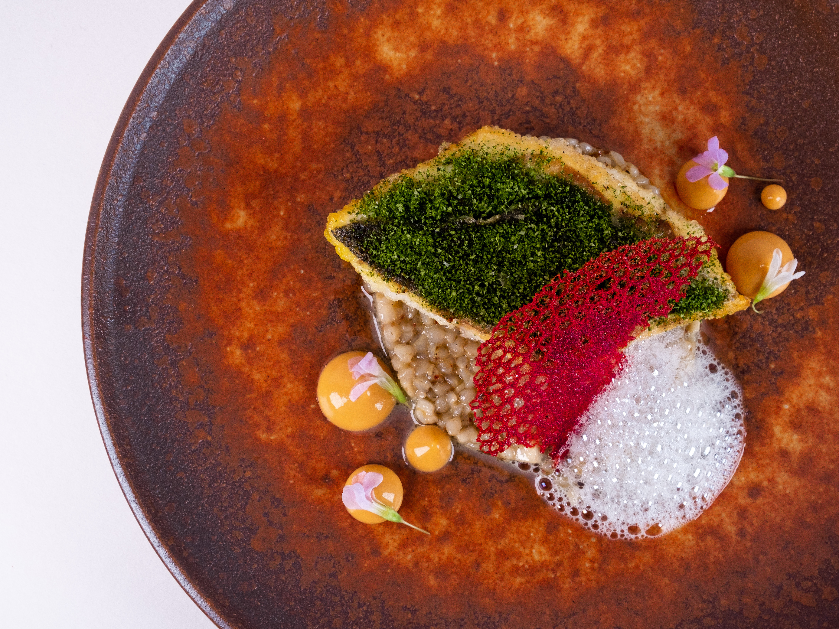 food to eat in London, food to eat in London this week, Nobu tastemakers