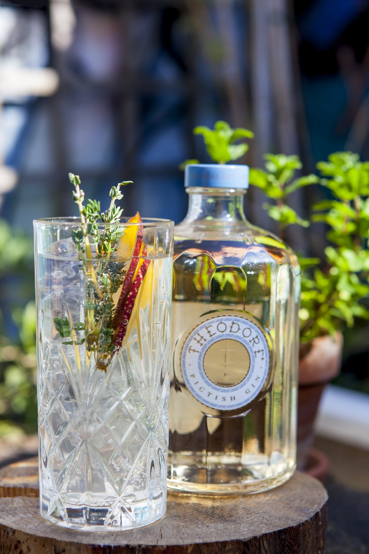 celebrate World Gin Day in london, World Gin Day in london, where to celebrate World Gin Day in london, top places to celebrate world gin day in london